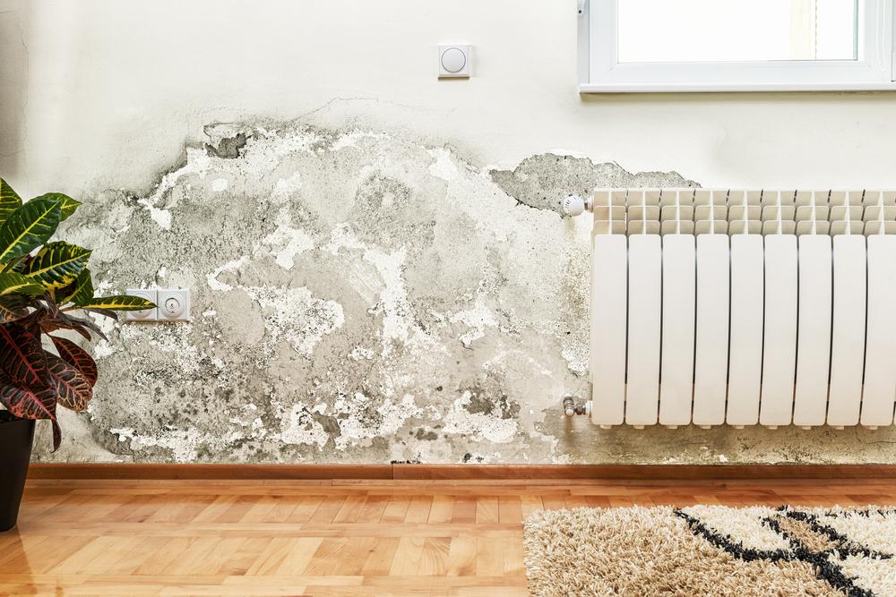 Umidità in casa rimedi e consigli