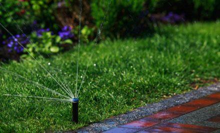 Quanto costa un impianto di irrigazione automatico per il giardino